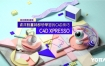 【YOTTA】C4D XPresso|从初阶到进阶-资深动画师都想学习的C4D技巧【画质高清有素材】